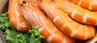 活凍金鑽蝦